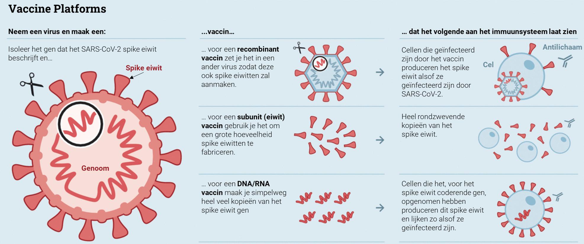 2The_Economist_NL2.PNG